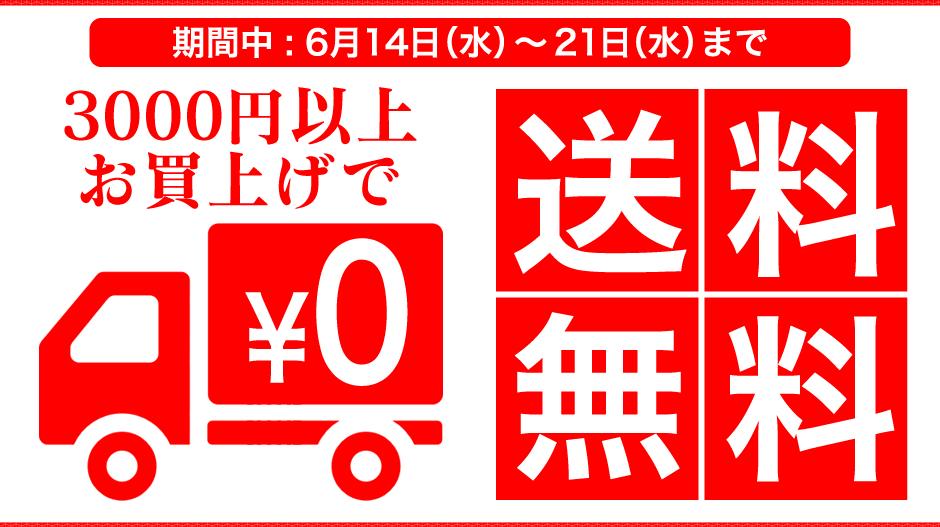3000円以上お買い上げで送料無料キャンペーン